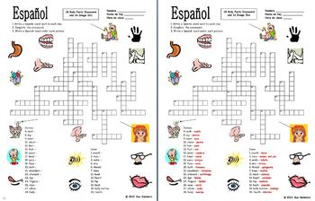 Spanish Body Parts Crossword (30 Words) and Image IDs (16 Words)
