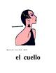 Spanish Body Parts Flashcards