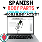 Spanish Body Parts - Label the Skeleton