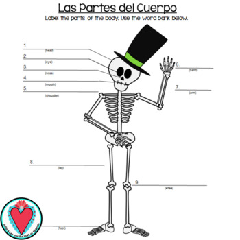 spanish body parts - label the skeleton
