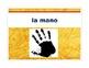 Spanish Body Parts-Partes del Cuerpo Presentation/Activities