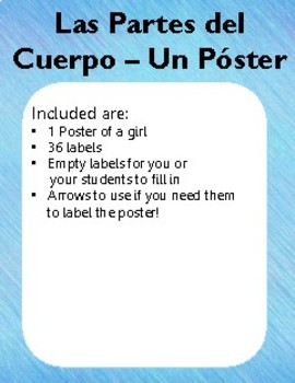 Spanish Body Parts Poster