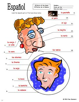 Spanish Body Parts of the Head Diagram to Label - 15 Parts - Cuerpo