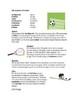 Spanish Hobbies Bundle ~ Los pasatiempos (6 Worksheets + 2