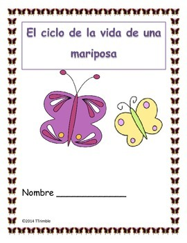 Freebie Spanish Butterfly Life Cycle