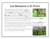Spanish Close Reading----Apple trees and Apples