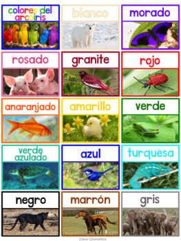Spanish Color Posters in Two Sizes and Chart