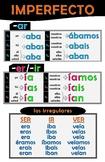 Spanish Conjugation-Imperfecto