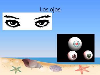 Spanish Definite Articles (Los Articulos Definidos; el, la, los, las)