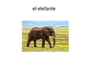 Spanish-English Cognate Game! (PowerPoint)