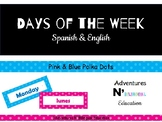 Spanish & English Days of the Week