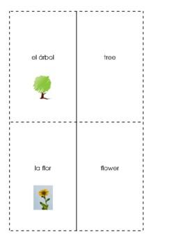 Spanish English Flashcards - Plants