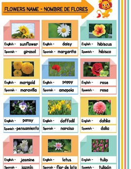 Spanish English Flowers Name Poster By Teachingmykid Tpt