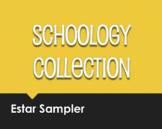 Spanish Estar Schoology Collection Sampler