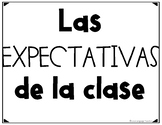 Spanish Expectation Posters