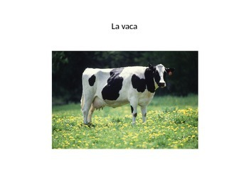 Spanish Farm animals powerpoint vocabulary