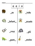 Spanish Fill the Blank (a e i o)