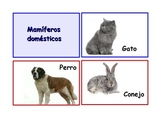 """Spanish Flash Cards """"Los animales"""" ,Animals and their classifications.90 ."""