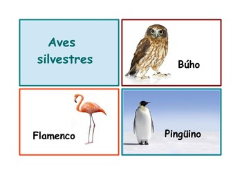 "Spanish Flash Cards ""Los animales"" ,Animals and their classifications.90 ."