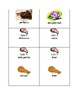 Spanish Foods Comidas Find the Missing Word Activity