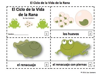 Spanish Frog Life Cycle 2 Emergent Reader Booklets