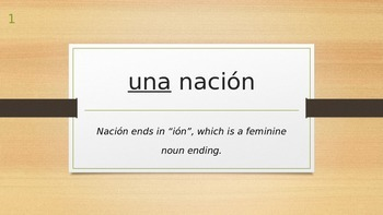 Spanish Gender of Nouns, Definite and Indefinite Article Practice