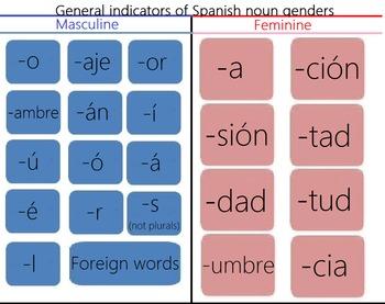 Spanish Genders!