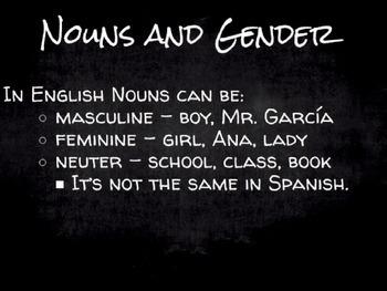 Spanish Grammar Presentation: Noun Gender