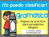 Spanish Grammar (nouns, verbs, adjectives) – Yo puedo clasificar gramática