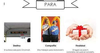 Spanish Graphic Organizer Bundle - Over 70 Graphic Organizers !