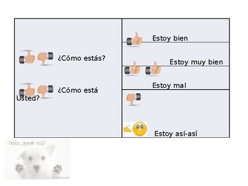 Spanish Guided Notes Introductory Expressions