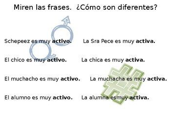 Spanish Guided Notes on Adjective Agreement