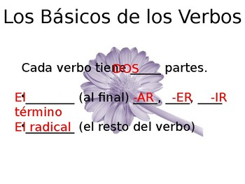 Spanish- Guided Notes on Conjugation Stem-Changing Verbs