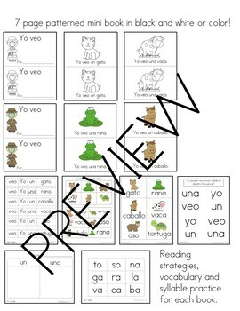 Spanish Guided Reading Groups Strategies and Resources Bundle