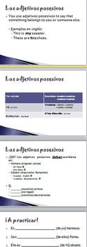 Spanish I Possessive Adjectives Powerpoint, Notes and Key