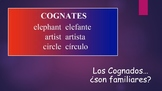 Spanish I Unit- Cognates (Noun and Adjective) & Intro to Adjective Agreement
