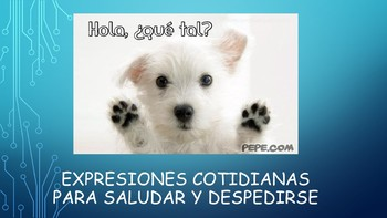 Spanish I Unit- Common Expressions and Greetings/Farewells