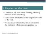 Spanish IV, Spanish V, IB, direct/indirect object pronouns