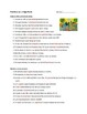 Spanish Imperfect Tense Comprehensible Input Worksheet