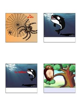 Spanish Interactive Notebook Activity: Mamíferos, reptiles, insectos y arácnidos