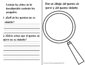 Spanish Interactive Science Journals for K/1: Insects, Coverings, Plants & more!