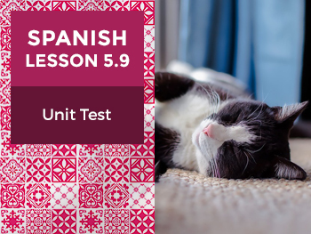 Spanish Lesson 5.9: Mi Espacio Personal - Unit Test