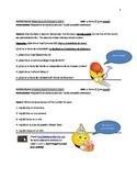 Spanish Level 1 Activity Booklet