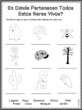 Spanish Living And Nonliving Things, FREE ONE ACTIVITY from Full Pack