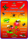 Spanish Minibeasts  Poster . A3