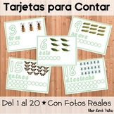 Spanish Montessori Inspired Insects Playdough Counting Mats