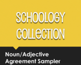Spanish Noun Adjective Agreement Schoology Collection Sampler