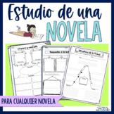 Spanish Novel Study   Estudio de una novela