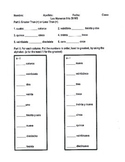 Spanish Numbers 0 to 39 Worksheet