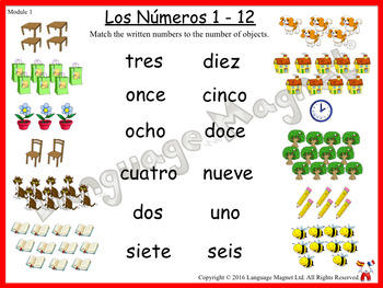 Spanish Numbers 1 to 12 Activity Sheet